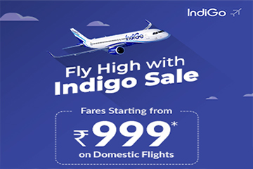 Indigo Domestic Sale