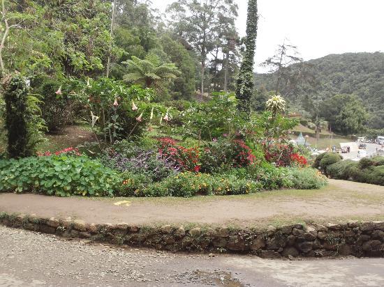 Hakgala Botanic Gardens - Nuwara Eliya