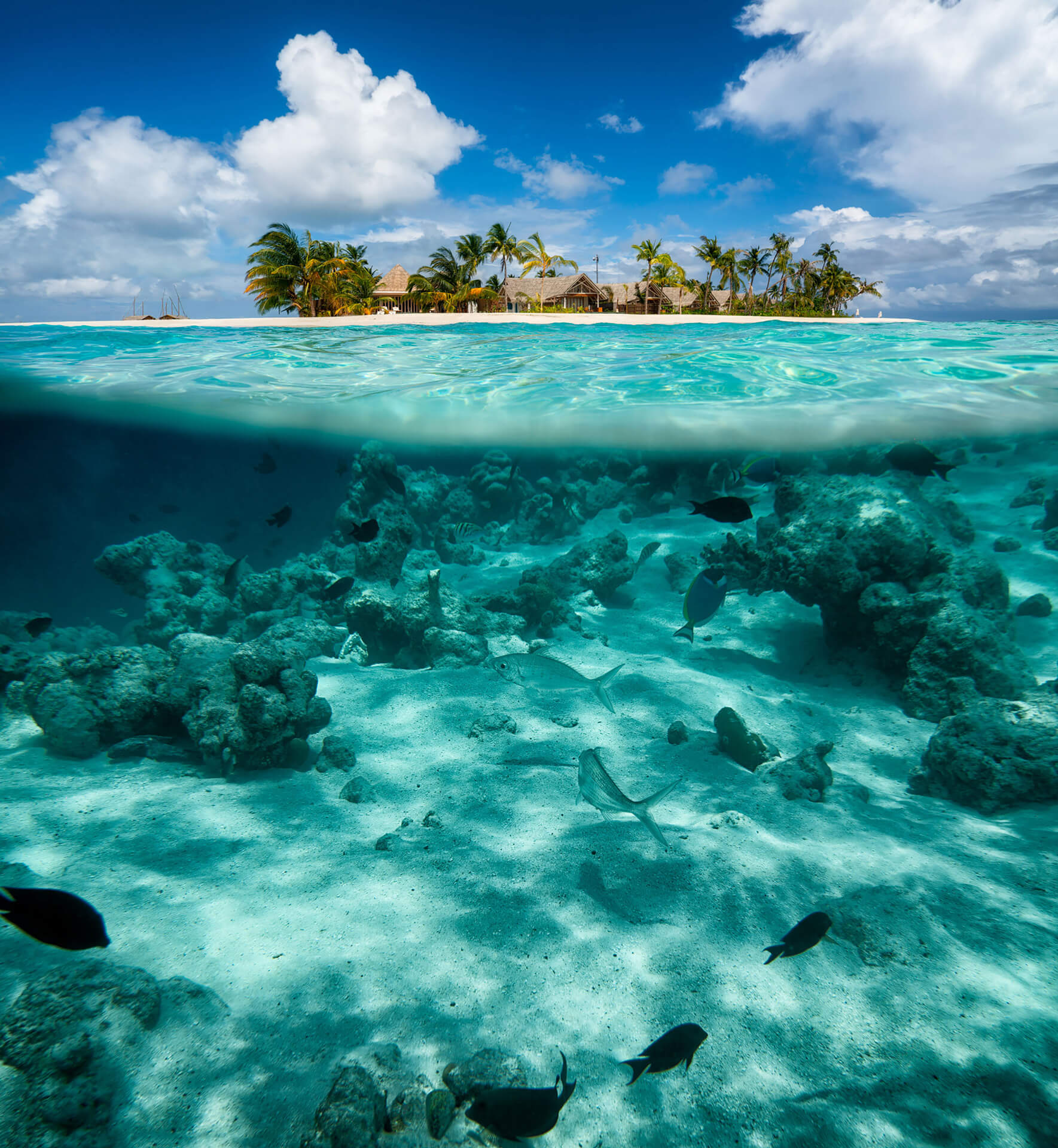 Island Resort: Maldives Tour Packages, 5 Days Tour To Maldives With