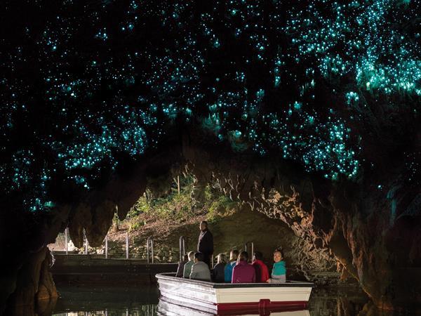 Waitomo Glow worm Caves - Waitomo