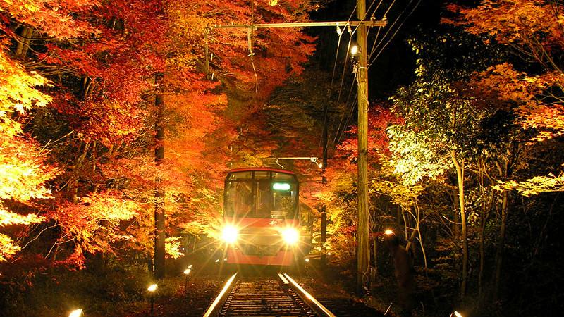 Momoji Tunnel - Kyoto